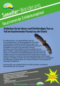 Seeadler beobachten - Abenteuer Angebot